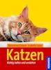 Katzen Bücher
