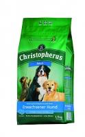 Christopherus Erwachsener Hund
