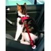 Trixie Sicherheitsgurt für Katzen