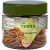 JR Farm Terra Protein Mealworms 20 g